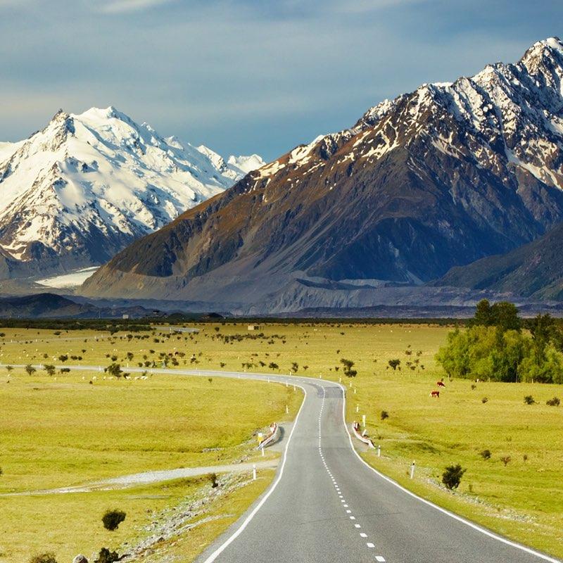 Self-Drive Tours NZ