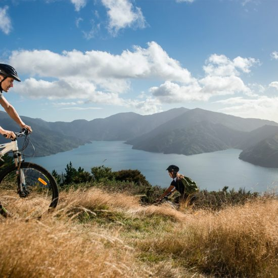 17 Day Cycle Tour of New Zealand