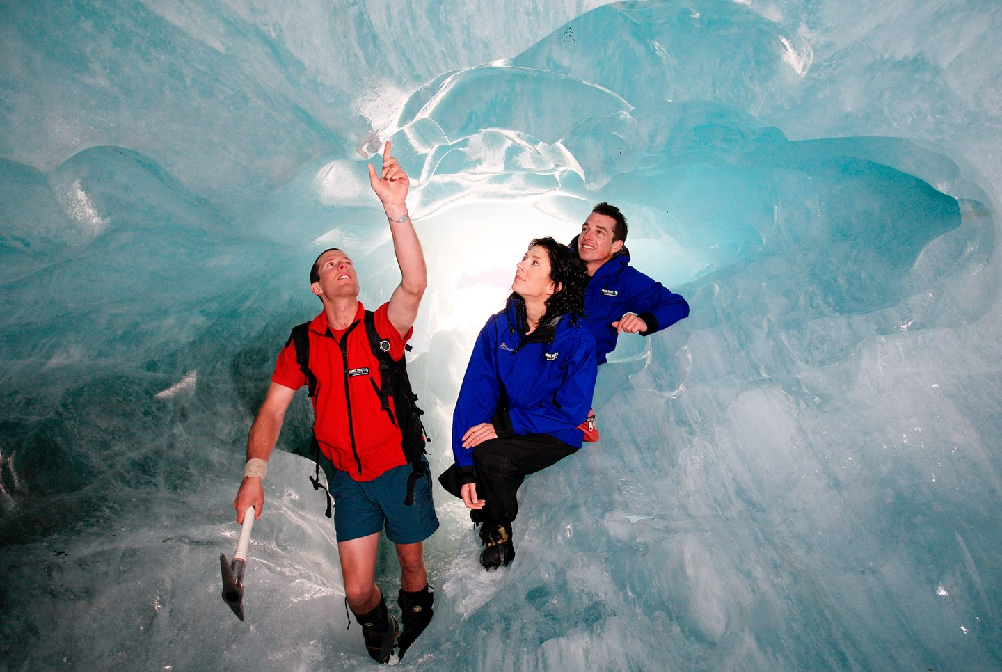 20 Day New Zealand Natural History Tour